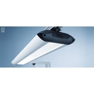 WALDMANN TAMETO LED Bench Lamp